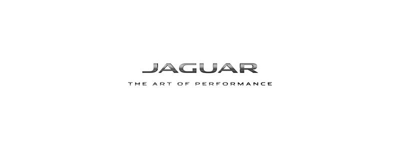 JAGUAR800x300